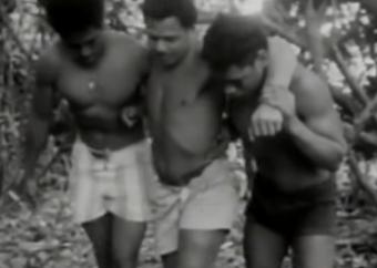 """""""Władcy much"""" z Tonga – czy historia z powieści wydarzyła się naprawdę?"""