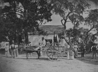 Niewolnicy na plantacji